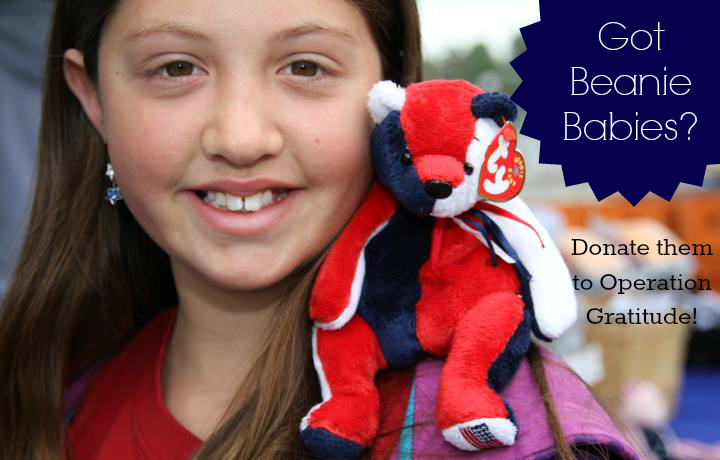 beanie babies phenomenon This section is for the more advanced beanie baby® collector our goal for this section is to give detailed explanations and actual pictures of our beanie® friends that have one or more variations.